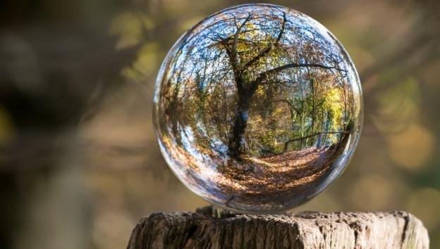 tree bubble-002